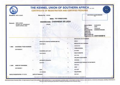 roger registration