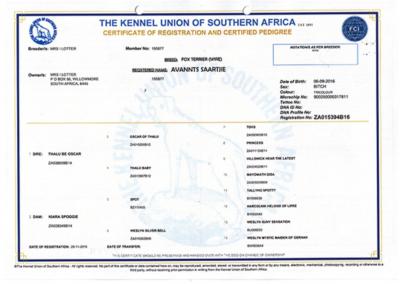 saartjie registration